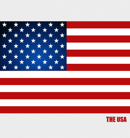 American Flag, Flags concept design. Vector illustration. Vector