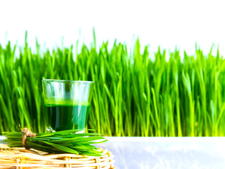 Shot glass of wheat grass with fresh cut wheat grass and wheat grains photo