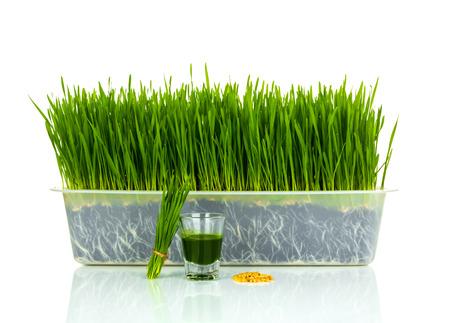 Strzał kieliszek trawy pszenicy z pszenicy pokrojone świeże trawy i pszenicy