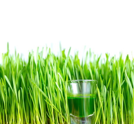 Shot glass of wheat grass with fresh cut wheat grass Stock Photo