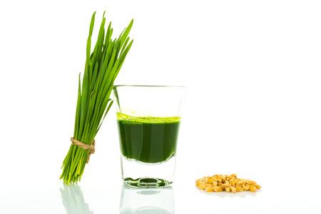 ショット グラス小麦草の新鮮なカット小麦草、小麦、米