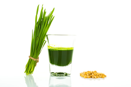 Shot glass of wheat grass with fresh cut wheat grass and wheat grains Stockfoto
