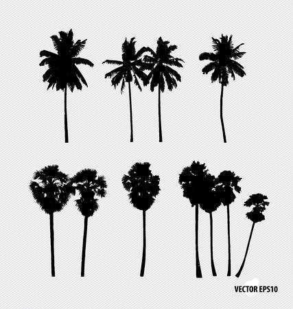 cocotier: Ensemble de silhouettes d'arbres. Vector illustration.