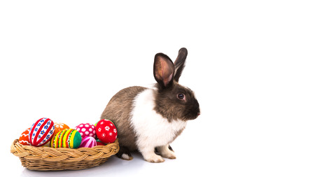 easter rabbit: Rabbit with Easter eggs isolated on white background Stock Photo