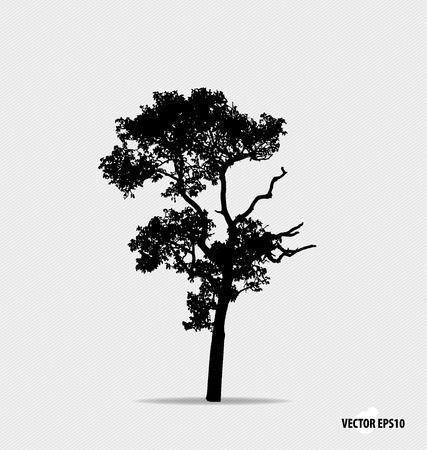 Boom silhouet. Vector illustratie. Stock Illustratie