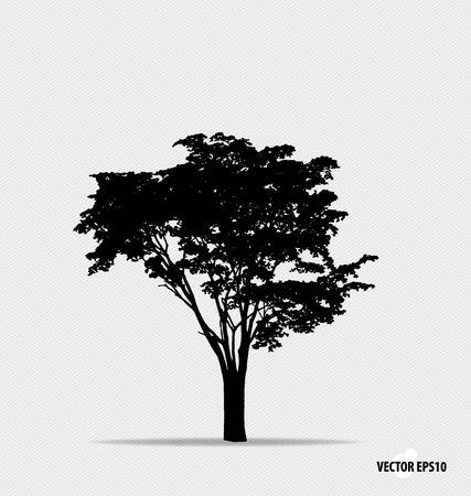 trunk: Silueta del árbol. Ilustración del vector.