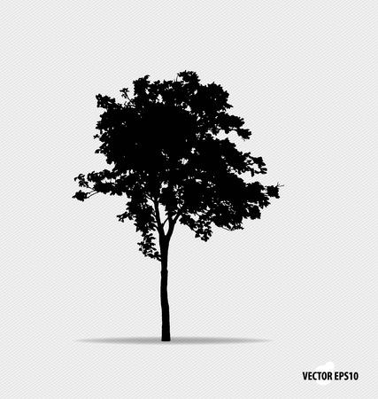 silhouette tree: Tree silhouette. Vector illustration. Illustration