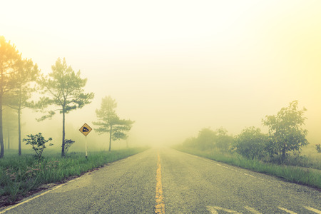 Road in fog with trees ( Filtered image processed vintage effect. ) photo