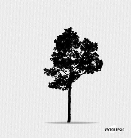 arboles blanco y negro: Silueta del árbol. Ilustración del vector.