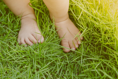 Baby feet in grass ( Filtered image processed vintage effect. ) Foto de archivo
