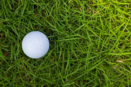 caddie: Golf ball on green grass