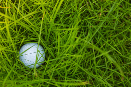 caddie: Golf ball on green grass