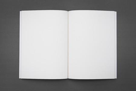 빈 카탈로그, 브로셔, 잡지, 책까지 조롱