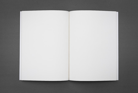 blank book cover: Blank catalog,brochure, magazines,book mock up