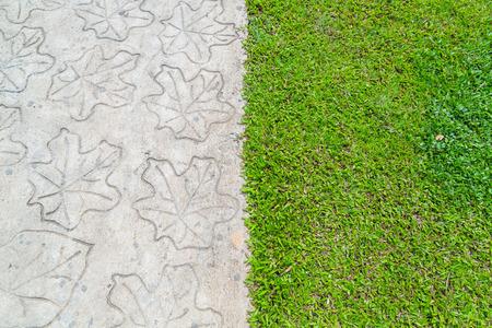stone path: Stone path with grass