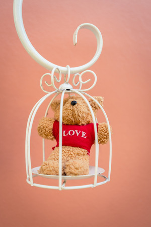pureness: Bear doll in white bird cage
