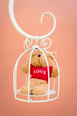 feel affection: Bear doll in white bird cage