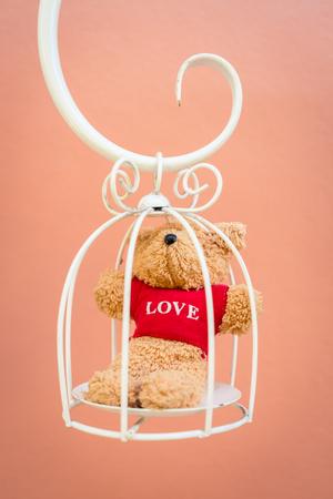 white bird: Bear doll in white bird cage
