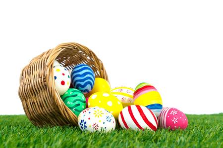 pascuas navide�as: Huevos de Pascua en la hierba verde fresca sobre el fondo blanco Foto de archivo