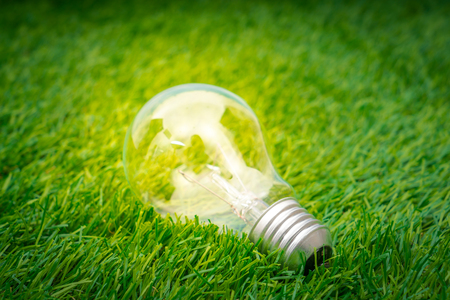 think green: Eco concept - light bulb grow in the grass