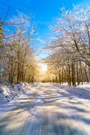 Road in winter , Japan Stock Photo