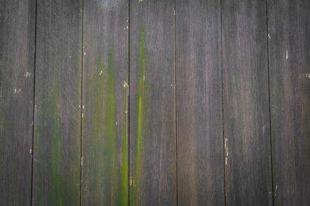 wood texture background: Wood texture background
