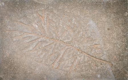 halftones: Leaf impression in stone Stock Photo