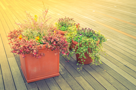 wood pillars: Outdoor plant in a traditional wooden floor ( Filtered image processed vintage effect. )