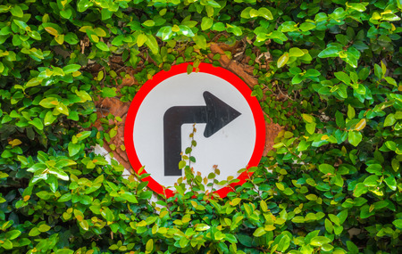 end of the trail: Turns to the right sign with green leaf Stock Photo