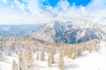Japan Winter berg met sneeuw bedekte
