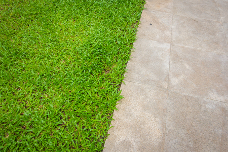 walk path: The walk path in the park with green grass Stock Photo
