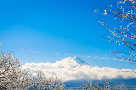Mountain Fuji with ice coating on the trees Stock Photo
