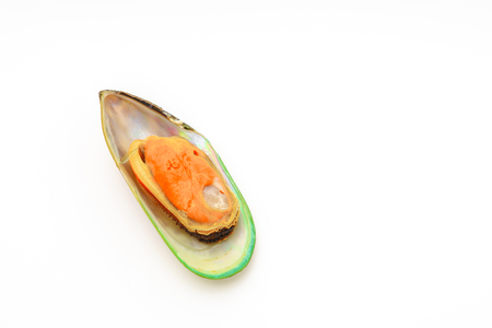 mussel: Fresh mussel on white background Stock Photo
