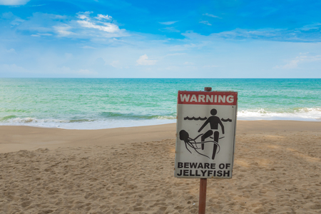Jellyfish warning sign at  beach Stock Photo