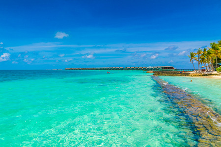 Hermosa isla tropical de Maldivas con mar y playa de arena blanca