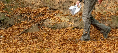 A woman walks on a forest path through autumnal beech leaves with copy space