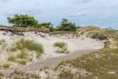 German Baltic Sea coast with sand dunes, grass, water and blue sky Фото со стока