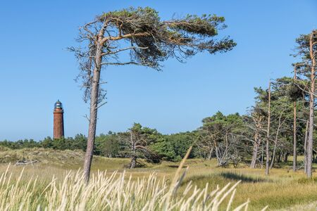 German lighthouse with slate pine and dry grass against a cloudy sky.