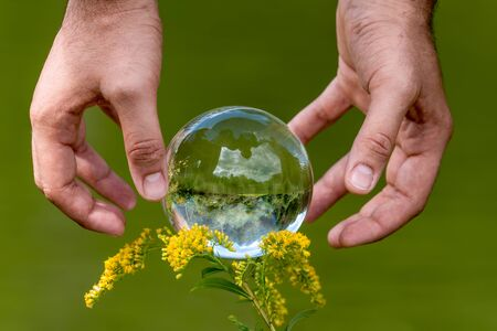 A mans hand reaches for a glass globe with a mirrored lake, trees and sky against a green background Фото со стока