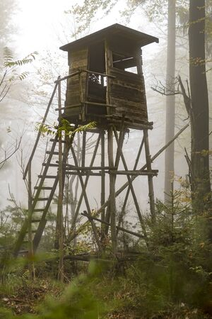 Wooden hunter perched at the forest edge in fog in autumnal pine forest against blurred background
