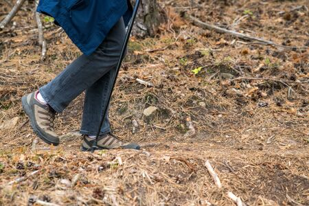Woman is walking with a walking stick on a trail covered with dry leaves and pine needle