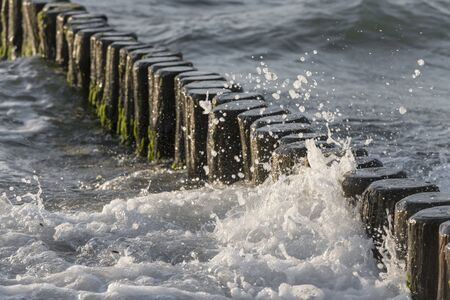Waves washed around logs on the Baltic coast in the sand as a breakwater Stock fotó