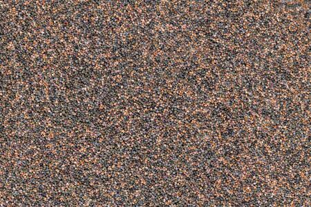 Background of evenly distributed small poppy seeds in different colors