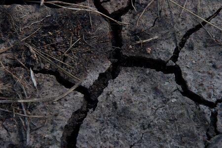 crannied:   crannied earth Stock Photo