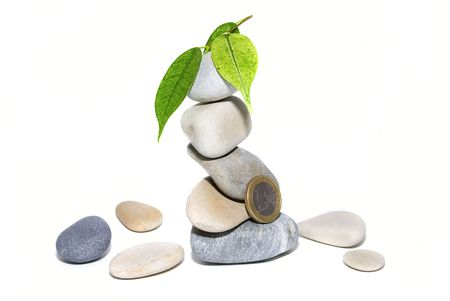 pile of stones, leaves and coins photo