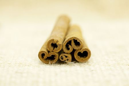 cinnamon sticks photo