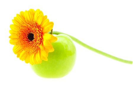 flower and apple isolated on white photo