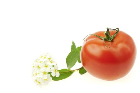 tomato and flower isolated on white