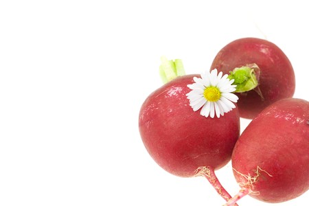 radish and a flower isolated on white photo