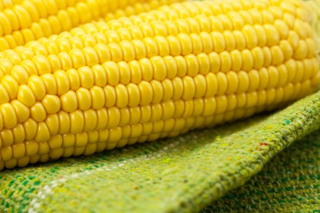 Corn lying on the mat photo